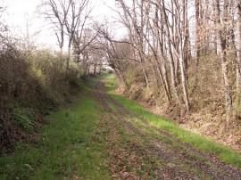 Sentier de Saint-Jacques de Compostelle