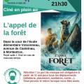 Cinéma en plein air à Montastruc :