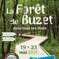 La Forêt de Buzet dans tous ses états